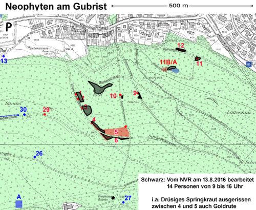 Bearbeitete Standorte im Gubristwald